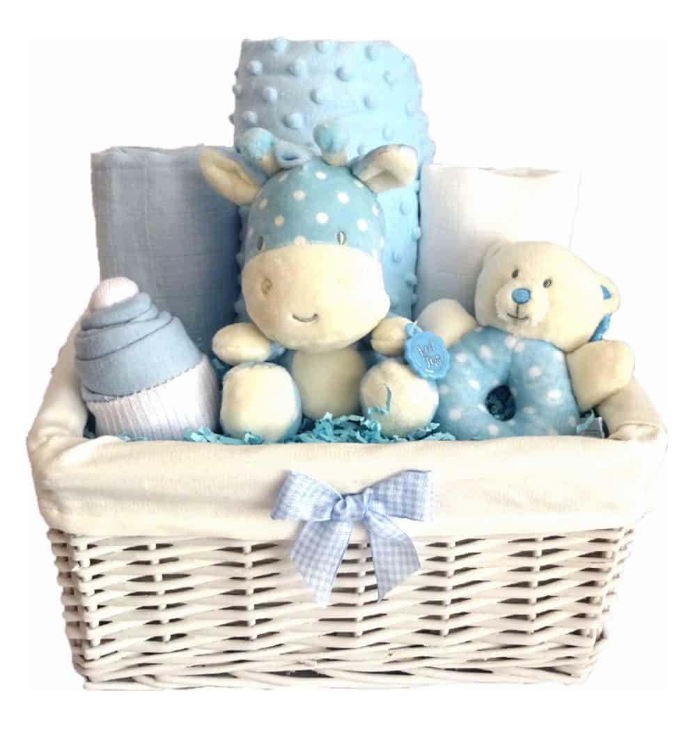 Beanie Baby Boy Gift Hamper Baby Hamper Gift